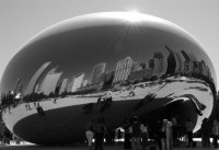 The Bean from the Northwest